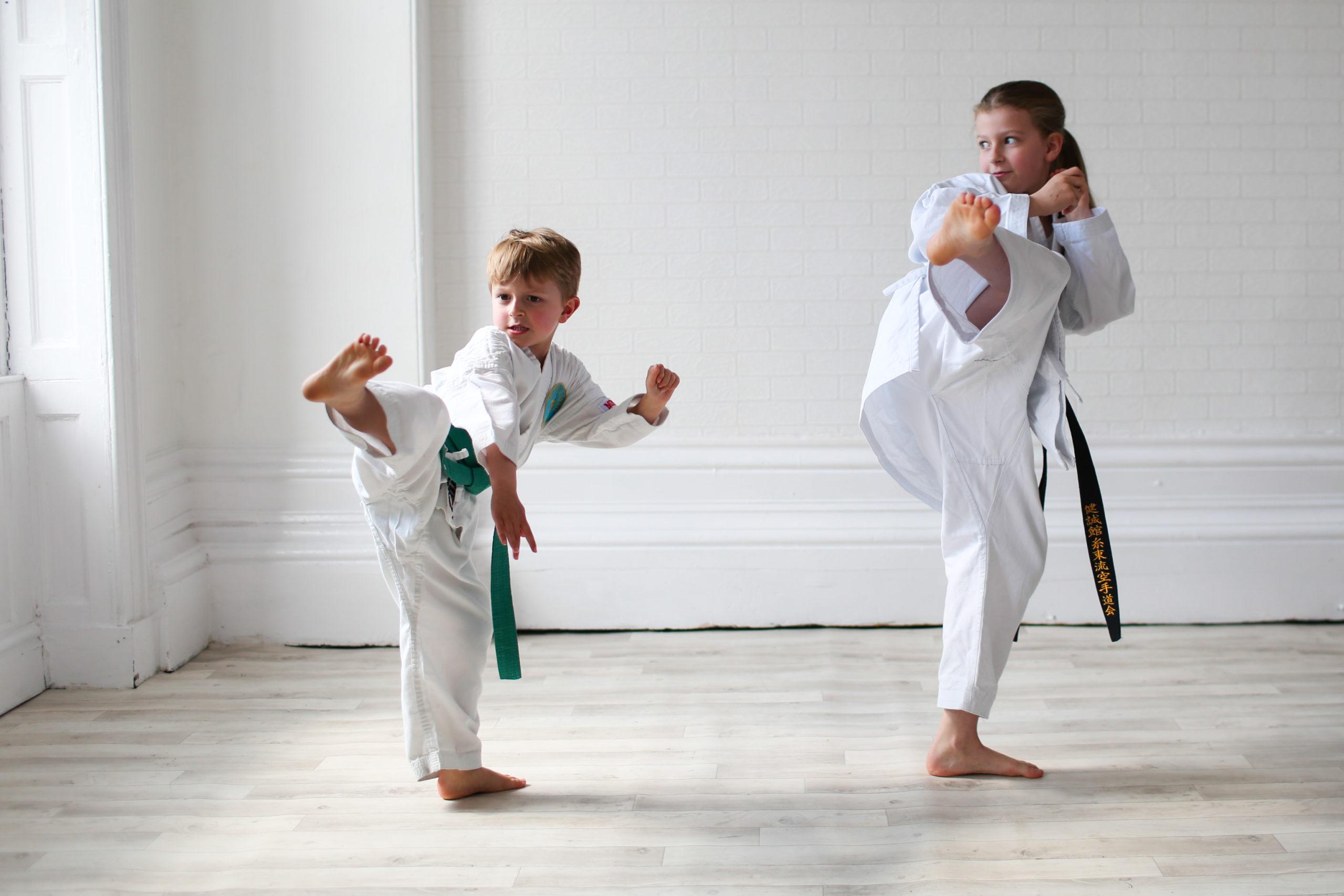 family portrait action karate
